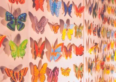 1 2009 papillons a (4)