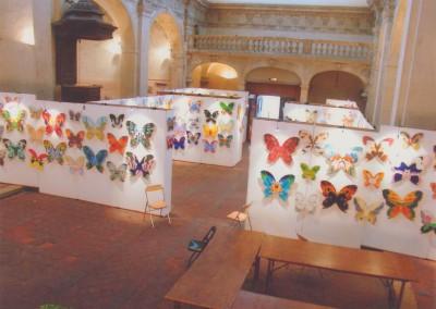 1 2009 papillons a (5)