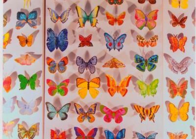 1 2009 papillons a (8)